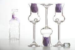 Glaces et bouteille Photo stock