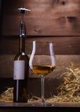 Glaces et bouteilles de vin Photo libre de droits