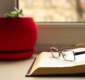Glaces et livres Photo libre de droits