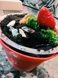 Glacez le pot avec le biscuit de fraise et de chocolat sur la table en verre Image libre de droits
