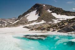 Glaciär i fjällängar Royaltyfri Fotografi