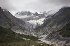 Glaciär i glaciärfjärd arkivbild