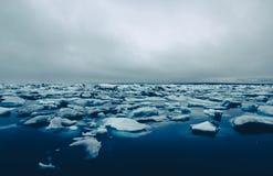 Glaciär lake Arkivbild
