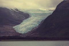 Glaciär på Alaska Royaltyfri Fotografi