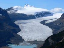 glaciär saskatchewan royaltyfri foto