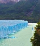 Glaciären i sjön Argentino Arkivfoton