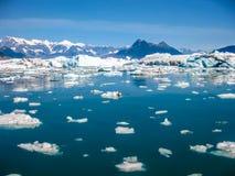 Glaciären möter havet Arkivfoton