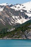 Glaciärfjärd, Alaska royaltyfri foto