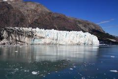 Glaciärfjärd - Alaska Royaltyfri Bild
