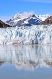 Glaciärfjärd i en solig dag Royaltyfria Foton