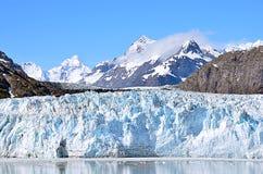 Glaciärfjärd i en solig dag Arkivbilder