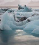 Glaciärlagun Island Royaltyfri Foto