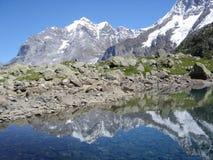 glaciärlakeoberhornsee switzerland Royaltyfri Bild