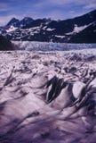 glaciärmendenhall Royaltyfri Fotografi