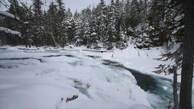 Glaciärnationalpark som snöar i vinter arkivfilmer