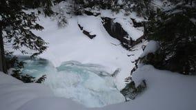 Glaciärnationalpark som snöar i vinter lager videofilmer