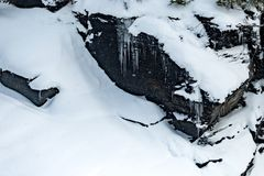 Glaciärnationalpark som snöar i vinter Royaltyfria Bilder