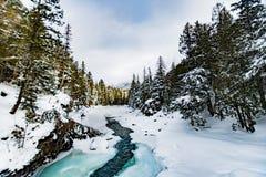 Glaciärnationalpark som snöar i vinter Royaltyfri Fotografi