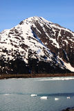 glaciärportage Royaltyfri Foto