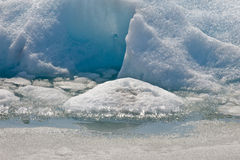 glaciärportage Arkivbilder