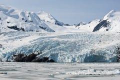 glaciärportage Arkivfoto
