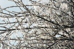Glacial  Image libre de droits
