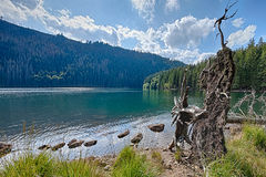 Glacial Black Lake surrounded by the forest Royalty Free Stock Image