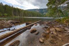 Glacial Black Lake surrounded by the forest Stock Photo