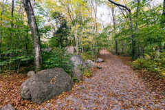 Glacial boulders in Franconia notch state park, new hampshire, u Royalty Free Stock Photography