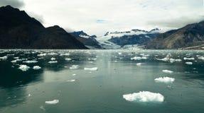 Glacial Flow Kenai Fjords Alaska Harding Ice Field Aialik Glacier stock image