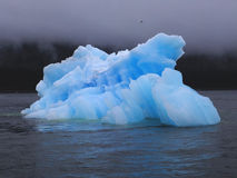 Glacial Ice. Floating chunk of ice calved from the Sawyer Glacier, Juneau, Alaska stock photography