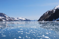 Glacial Icebergs. In Alaskan Bay Royalty Free Stock Images