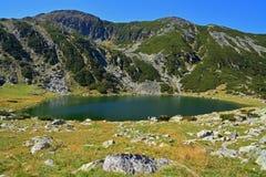 Glacial lake. In retezat national park, romania royalty free stock images