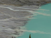 Glacial river delta flowing into Peyto Lake, Alberta, Canada. The unique turquoise color waters of Peyto Lake are caused by the high amount of glacial till stock photography