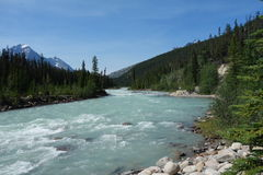 A glacial river in the rocky mountains. Stock Images