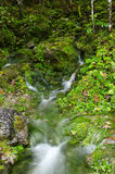 Glacial spring in the german Ramsau Stock Photography