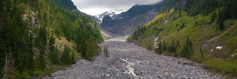 Glacial valley, Mt. Rainier Royalty Free Stock Photo