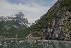 Glaciar de Alaska de la bahía del descubrimiento Foto de archivo