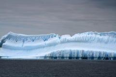Glaciar de Ant3artida Imagen de archivo