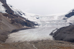 Glaciar de Athabasca, Columbia Icefield fotos de archivo