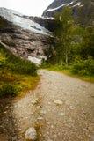Glaciar de Boyabreen en Noruega Foto de archivo libre de regalías