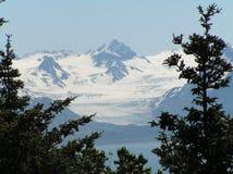 Glaciar de Grewingk Fotos de archivo libres de regalías