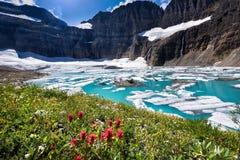 Glaciar de Grinnell Fotos de archivo