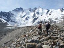 Glaciar de Laughton Fotos de archivo