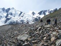 Glaciar de Laughton Foto de archivo libre de regalías