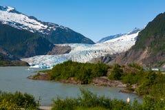 Glaciar de Mendenhall durante verano Fotografía de archivo libre de regalías