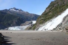 Glaciar de Mendenhall; Juneau, Alaska imagen de archivo