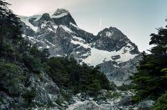 Glaciar del弗朗西丝在托里斯del潘恩国家公园在智利 库存照片