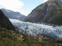 Glaciar del Fox en Nueva Zelanda imagen de archivo