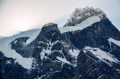 Glaciar del Frances i den Torres del Paine nationalparken i Chile Arkivbild
